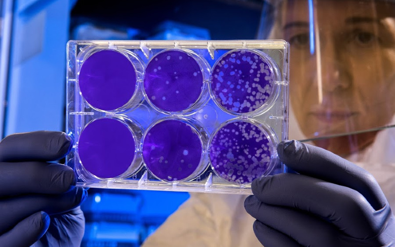 Coronavirus | Covid-19 |  What is Coronavirus |Here's what we know about it