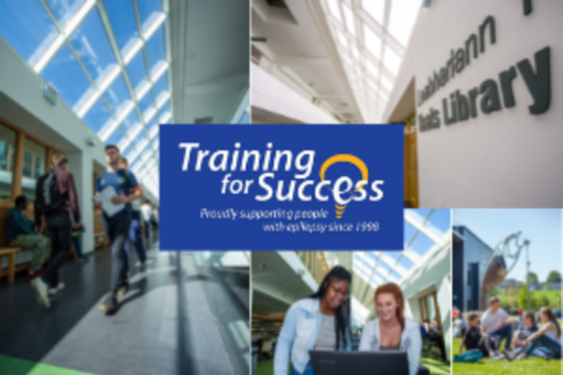 Epilepsy Ireland Training For Success
