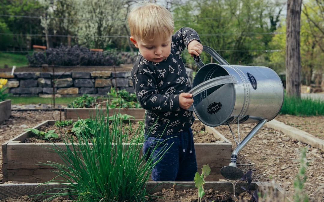 €800,000 in funding for community gardens, outdoor spaces and allotments